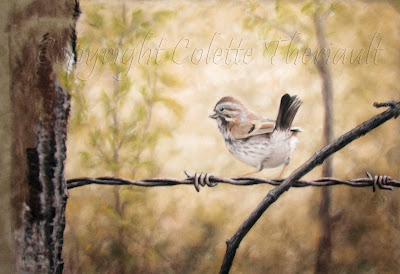 Sparrow bird on a wire painting by Colette Theriault