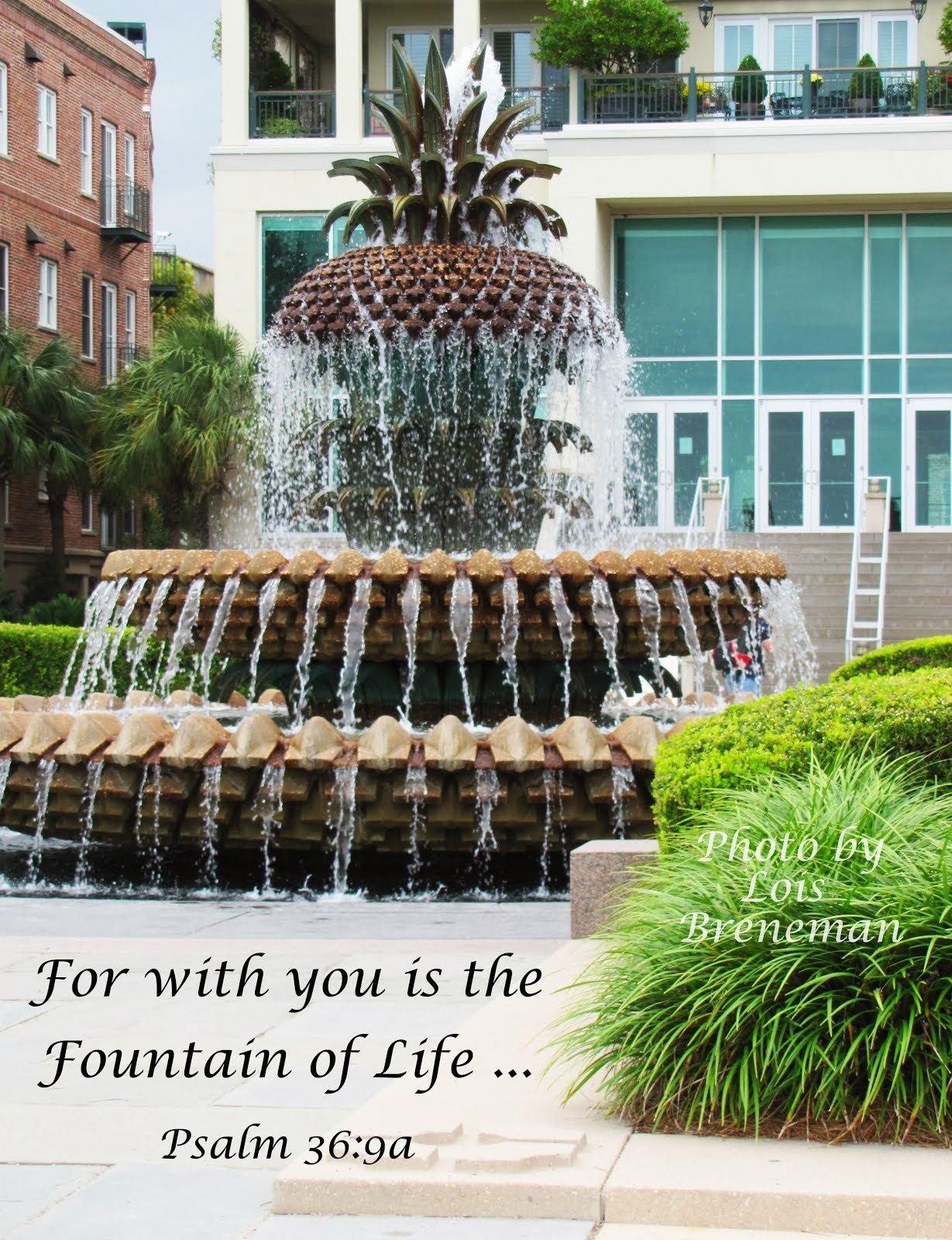 Fountain of Life - Psm. 36:9a