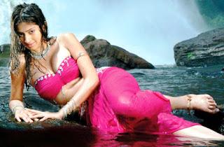 Laxmi Rai  Stills 1.jpg