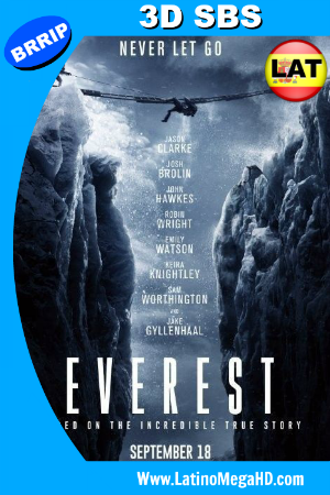 Everest (2015) Latino Full 3D SBS 1080P ()