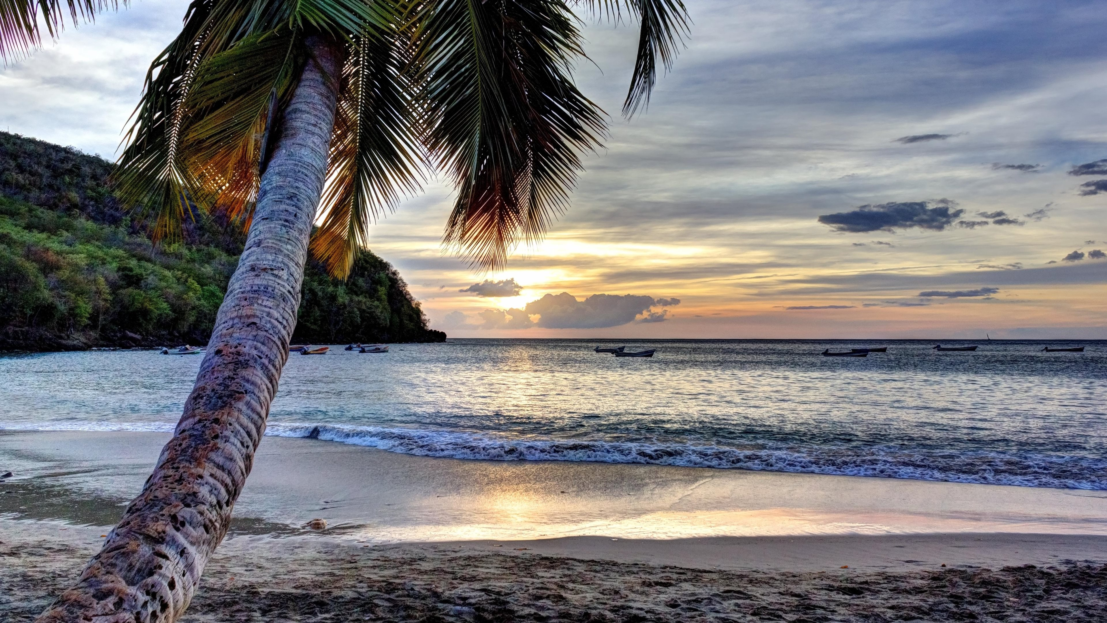 Martinique in the eastern caribbean sea wallpapers hd wallpapers