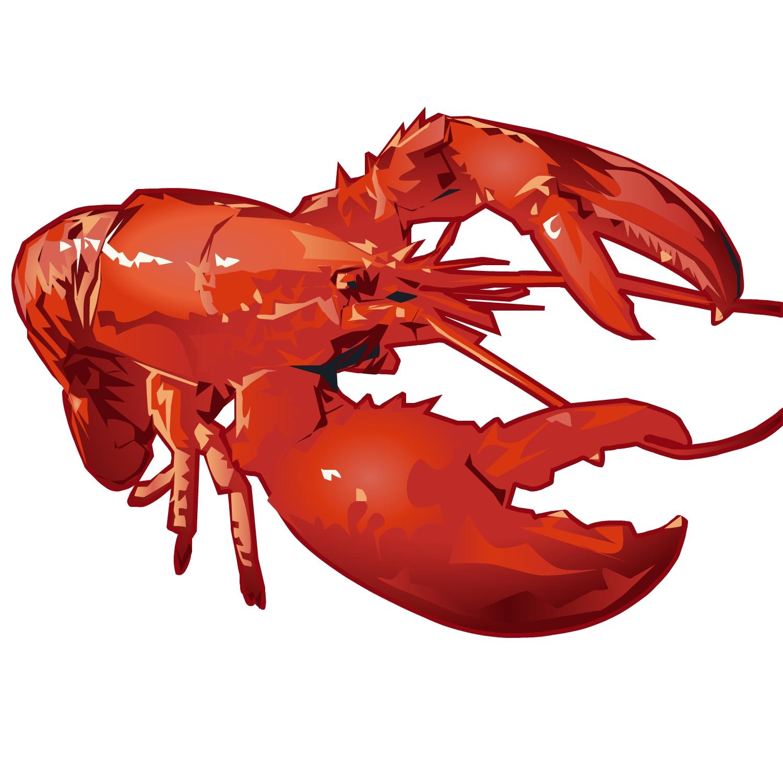 fancy lobster presentation - HD1500×1500