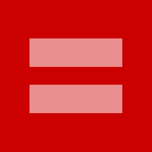 Milhões de pessoas compartilharam logo no Facebook em defesa do casamento de pessoas do mesmo sexo (Foto: Divulgação/AP)