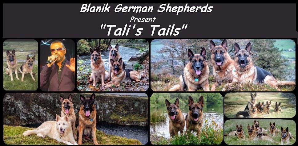Tali's Tails