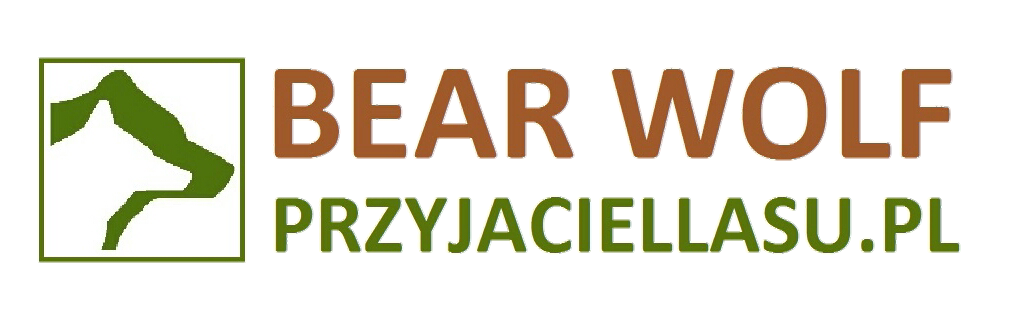 BEAR WOLF - PRZYJACIEL LASU