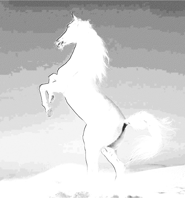 cavallo disegni stampa colora