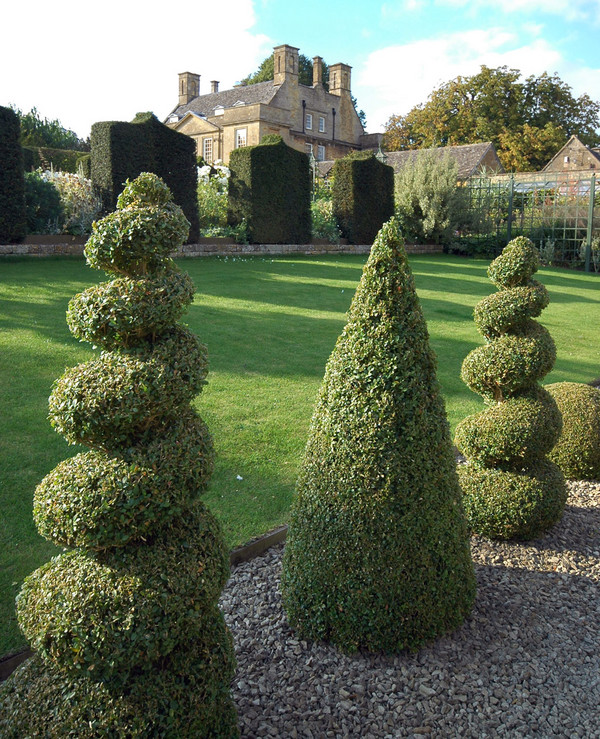 Amazing Topiary: I Don't Know How I Feel About That.: ABC... All About Me