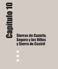 Guía de Georrecursos de Andalucía. Sierras de Cazorla, Segura y Las Villas y Sierra de Castril
