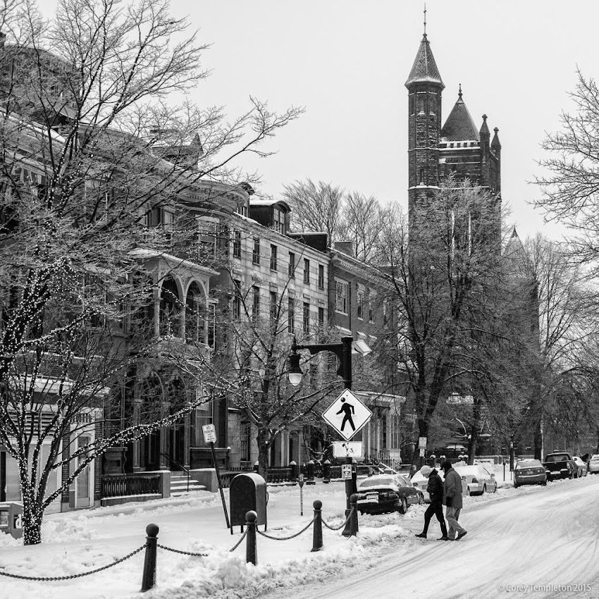 Portland, Maine USA January 2015 Winter snow State Street black and white photo by Corey Templeton