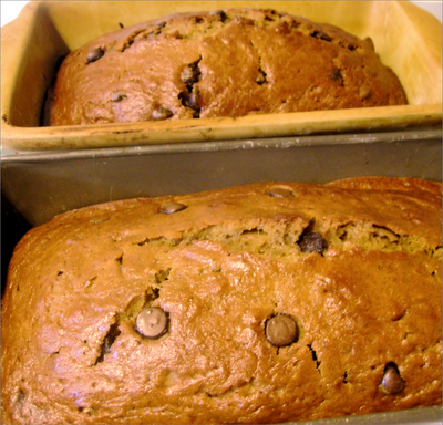 Chocolate Chip Pumpkin Bread, Becky Cooks Lightly