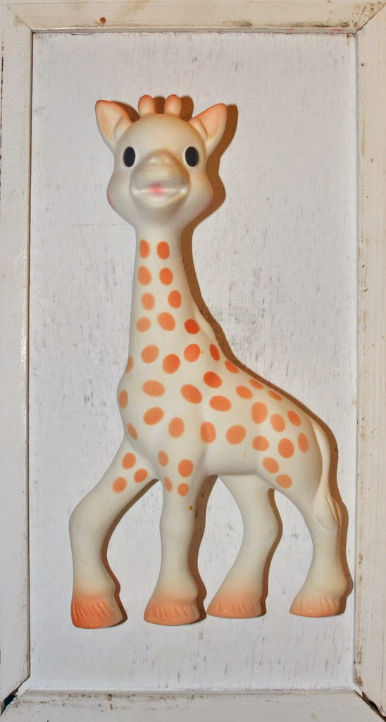 duża żyrafka sophie