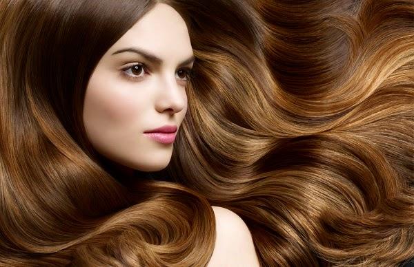 Kumpulan Tips Ampuh Perawatan Alami untuk Rambut