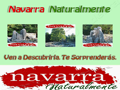 En el turismo en general y más particularmente en el Turismo Rural, las métricas son muy importantes  de medir, para saber y conocer cómo  evolucionan, bien sean las campaña que realicemos o las actuaciones que hemos creado.   La elección de las métricas a seguir y contabilizar, son muy variadas, según sea el Lobby, Asociación, Consorcio o Clúster  de turismo que las seleccione.  En Navarra Naturalmente, se le  da mucha importancia, a las solicitudes de información que los viajeros, turistas y visitantes demandan, en las diferentes oficinas de turismo  o en los puntos de información, de los propios Lobbys  turísticos.