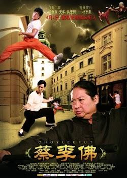 Lò Võ Trung Hoa - Choy Lee Fut (2011) Poster