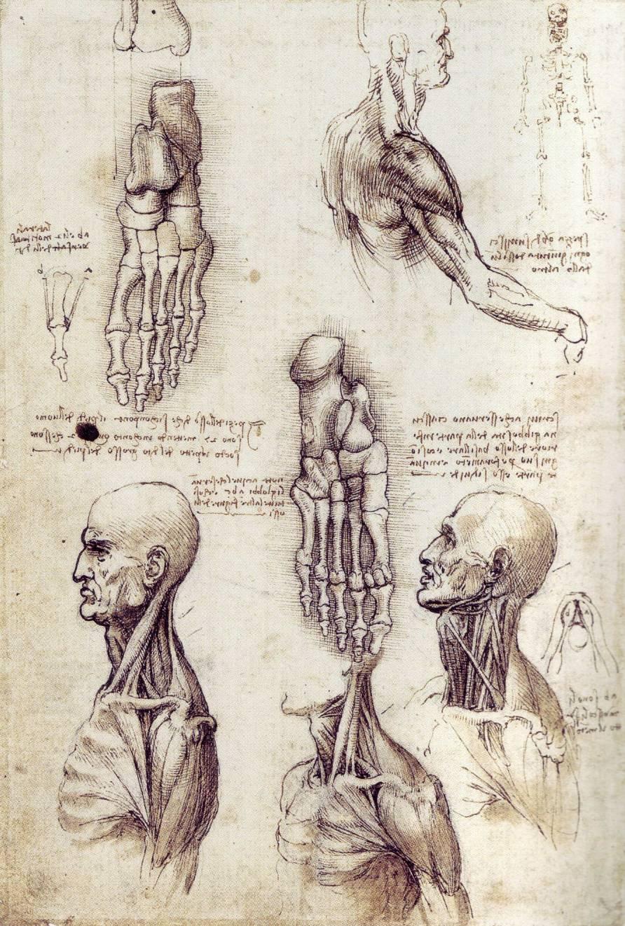 Leonardo Da Vinci - Inventions of a modern genius - YouTube