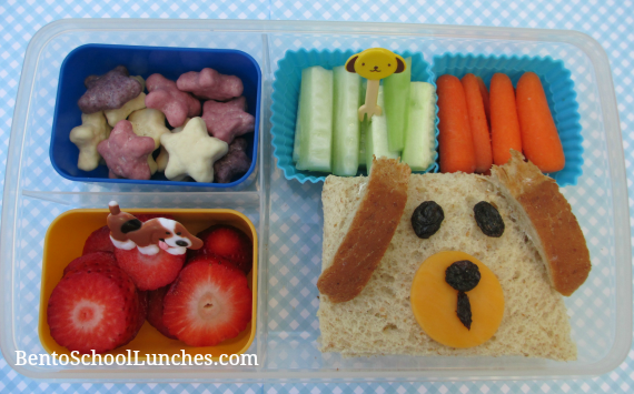 Puppy, bento school lunches