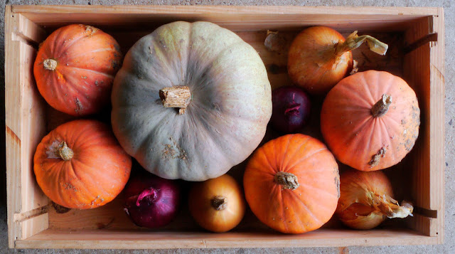 A box of winter squashes