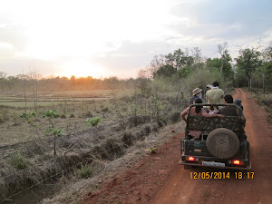 "Returning back from ""Buffer Zone Safari"""