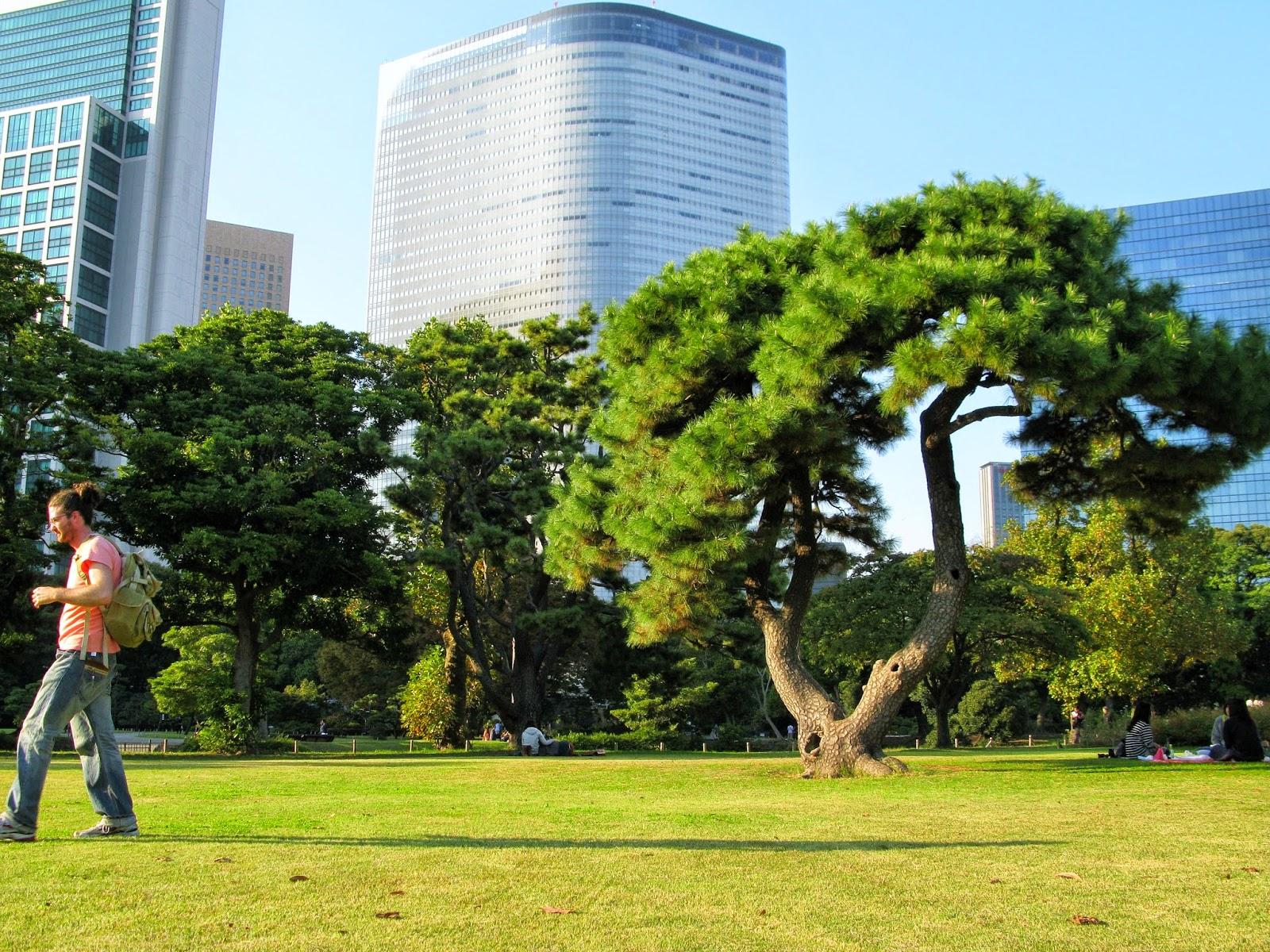 Inside Hamarikyu Park, Tokyo.