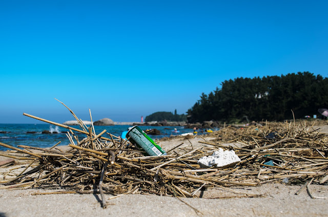 Chilpo Beach Pohang Trash Dirty Beach