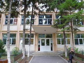 Web Colegio Rumanía