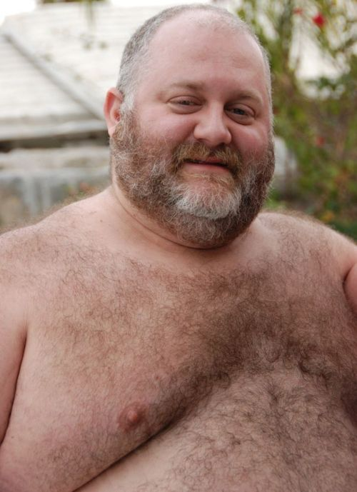 hairy chested guys  - fat bearded men - mature gays - fat daddybears