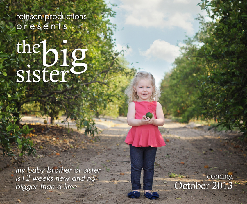 MATERNITY Pregnancy Announcement Life Baby – Big Sister Birth Announcement