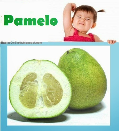Baby Pamelo