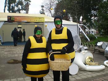 Abeja obrera y zángano recibiendo a los apicultores