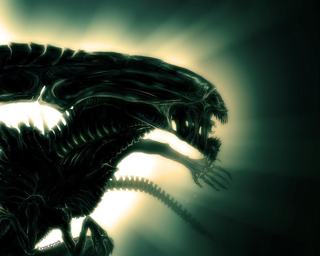 Scary Night HD Wallpaper