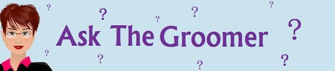 Ask the Groomer