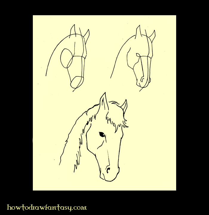 draw horse. How to draw a horse head