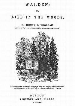 walden thoreau satirical criticism Essays and criticism on henry david thoreau's walden - essays.