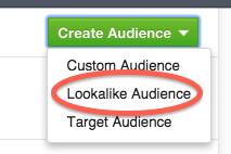 04-facebook-lookalike-audience
