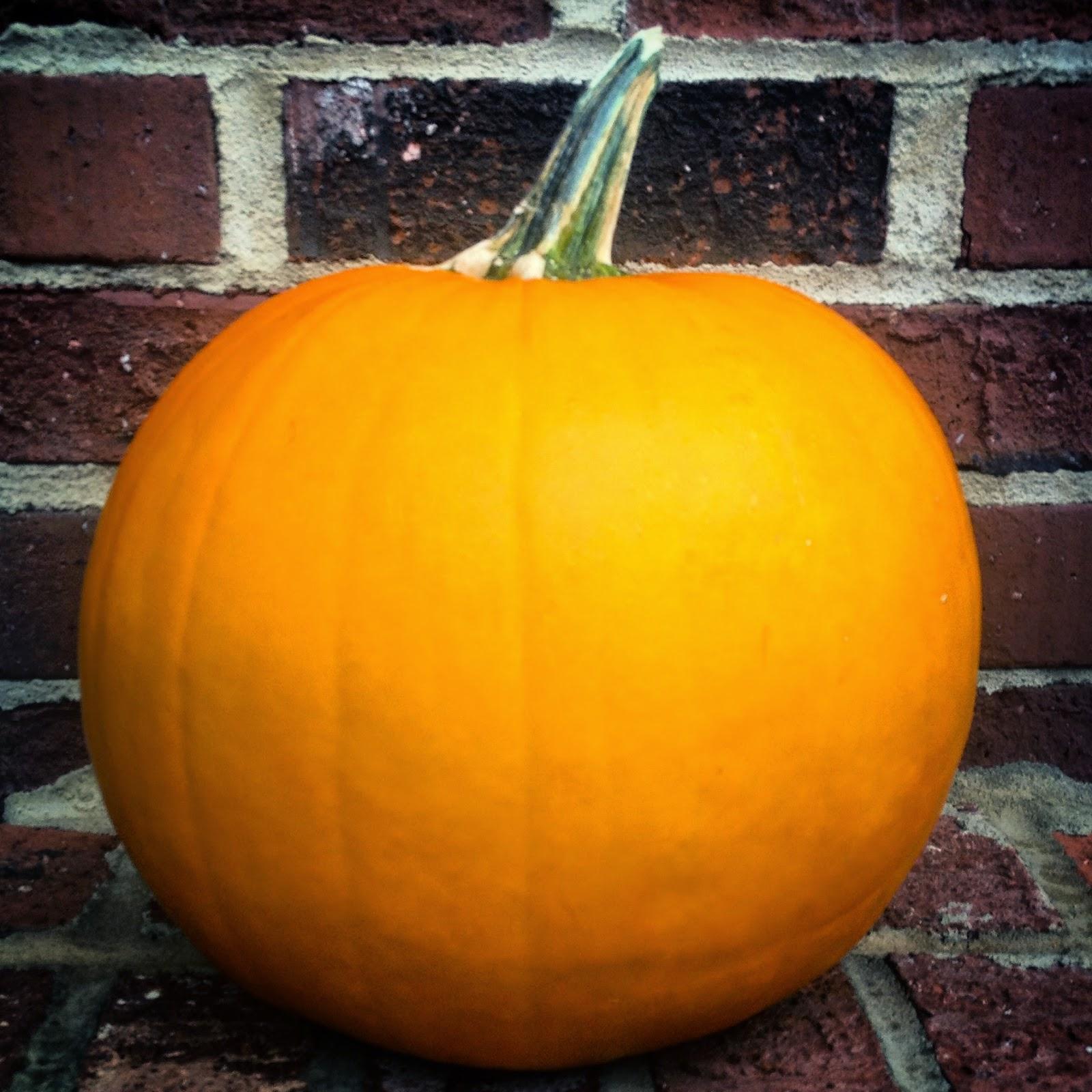 happy-halloween-fashionado