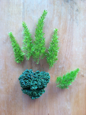 Fox Tail Fern for fingers and Kale for the palm makes a hand