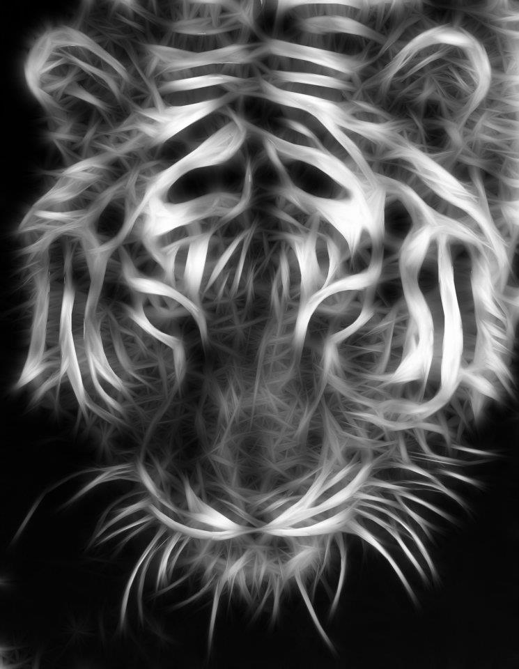 Fractal big cats white tigers art two wallpaper fractal fractal fantasy art fractal tiger voltagebd Images