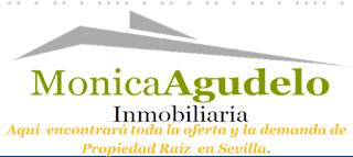 http://www.monicaagudeloinmobiliaria.com/