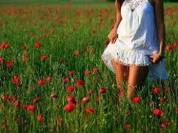 O tempo é muito lento para os que esperam, Muito rápido para os que tem medo, Muito longo para os q