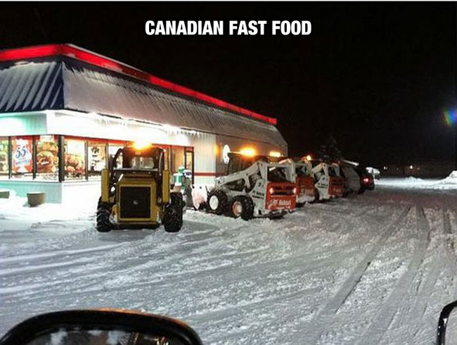 Hey, they have to eat somehow. - Life In Canada Is So Much Different, And Colder, Than Life Anywhere Else.