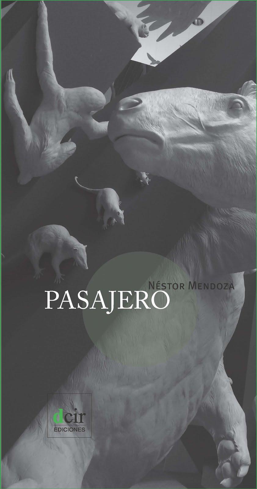 Pasajero (2015)