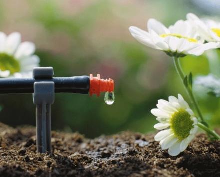 Jardines modernos for Bomba de agua para riego de jardin