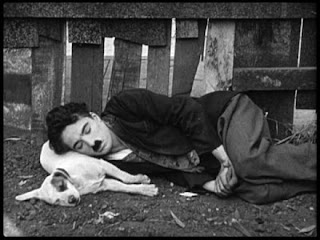 La canina almohada de Chaplin