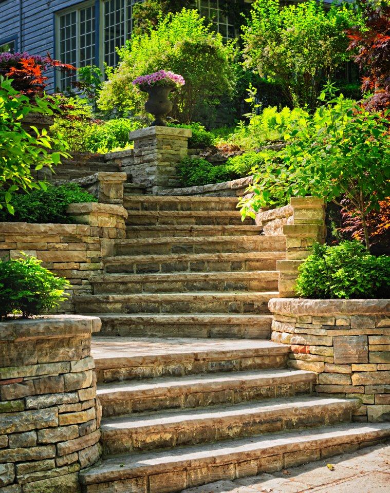 Arte y jardiner a elementos del jard n for Elementos de jardineria