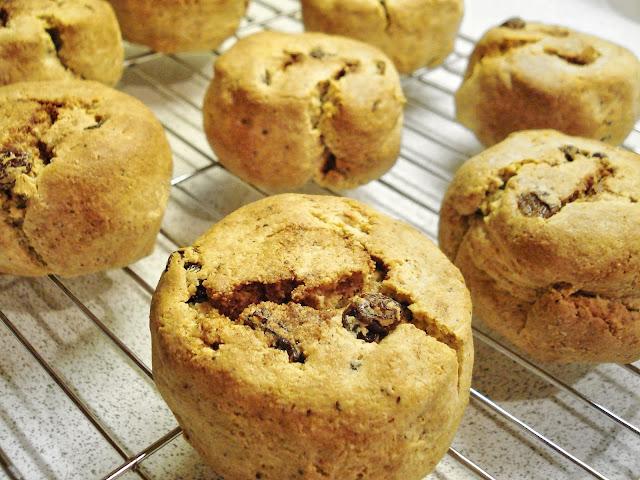 Gluten Free SCD and Veggie: Cinnamon - Cinnamon and Raisin Bread Rolls ...