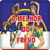 Download - CD - ORQUESTRA - AMIGOS DO FREVO - CARNAVAL - 2015