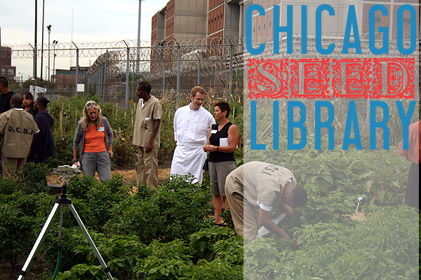 Cook County Jail Garden Chicago Urban Farm