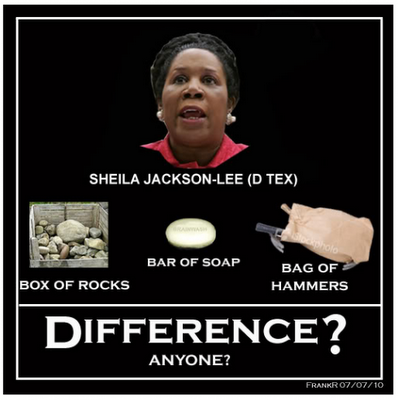 Sheila Jackson Lee stupid