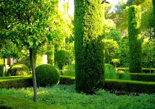 El jard n mediterr neo de l 39 albarda guia de jardin - El jardin de lola ...