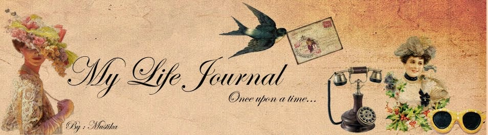 My  Life  Journal
